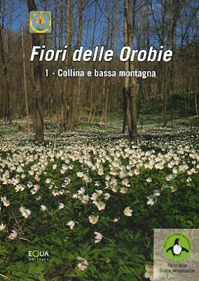 Fiori delle Orobie series. 1. Collina e bassa montagna.