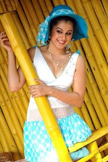 Tapsee hot and spicy photos