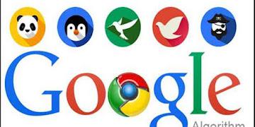Ketika Terjadi Update Algoritma Google, Saya Harus Gimana?