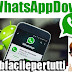 WhatsApp Down | Fuori uso per 40 minuti dall'America all'Europa  - Ecco cosa sta succedendo