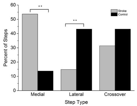 図:medial step内側へのステップ