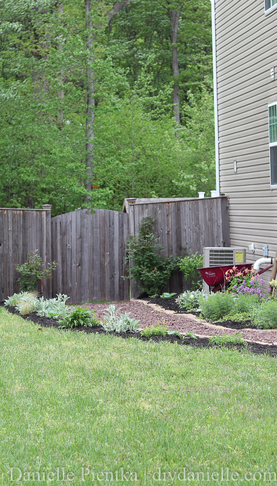 Larger view of the garden and path leading to the fenced backyard.