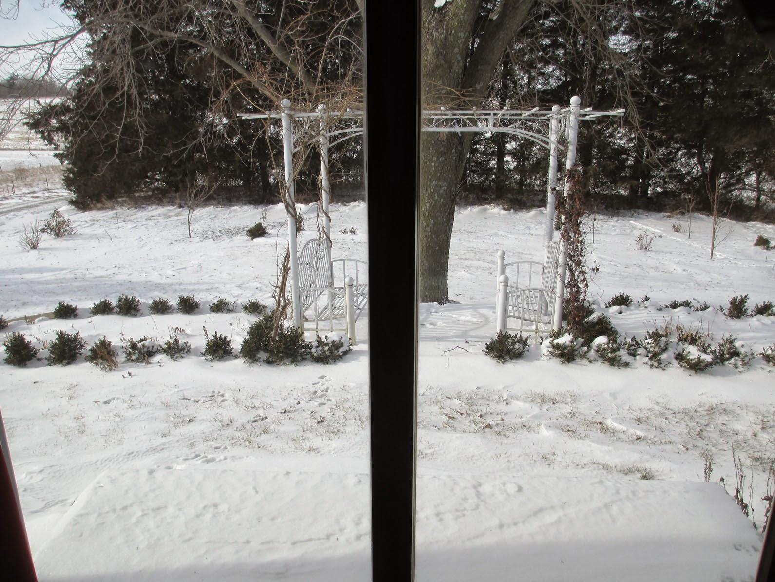 garden fancy winter window views. Black Bedroom Furniture Sets. Home Design Ideas