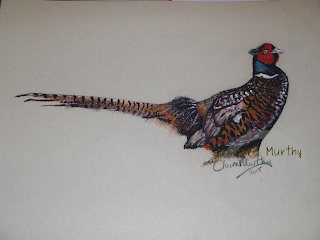 painting of a pheasant in pastels