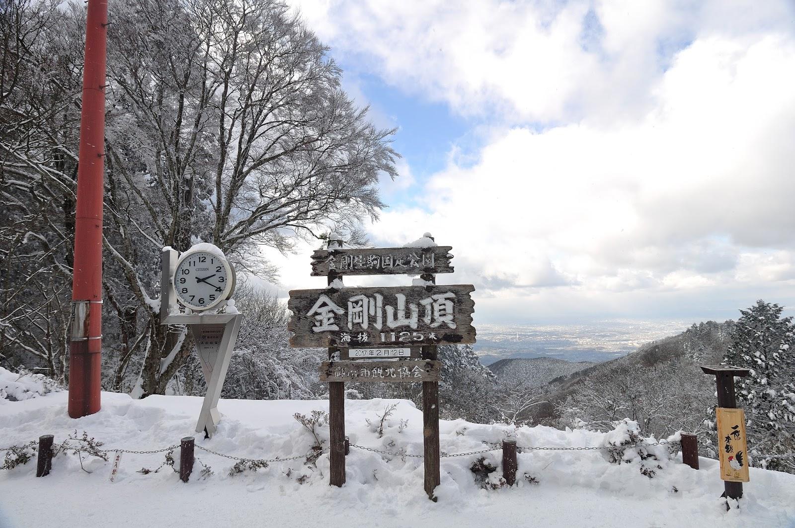 山 情報 金剛 積雪
