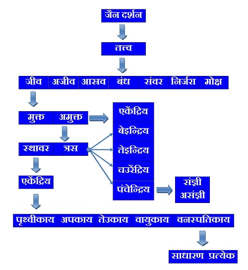 Jainism (Jain Philosophy) Tattva Gyan (Jiva) in Hindi