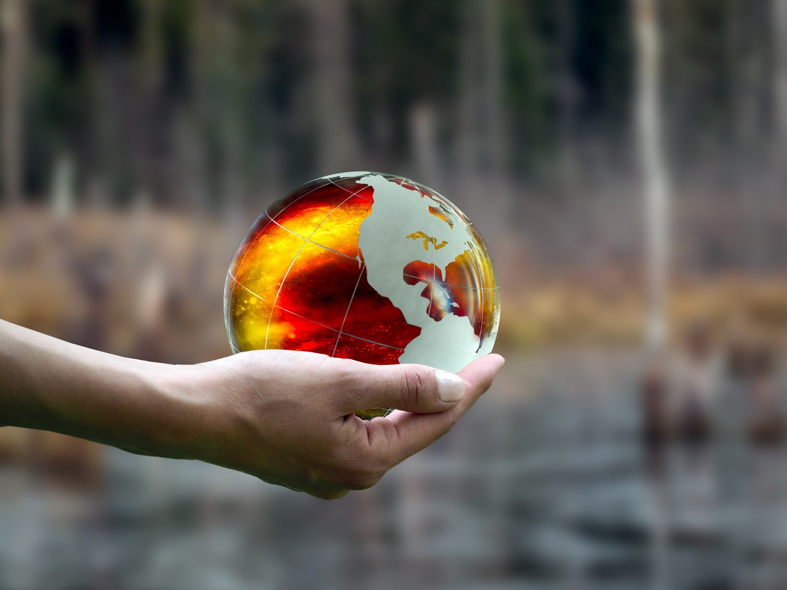 Time Is Running Out: 15,000 Scientists Pen 2nd Warning on Human Annihilation of the Earth