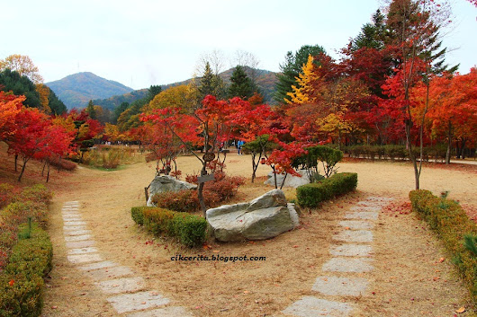 SANTAI MUSIM LURUH - KOREA - 2015 - DAY 3 - PART 3