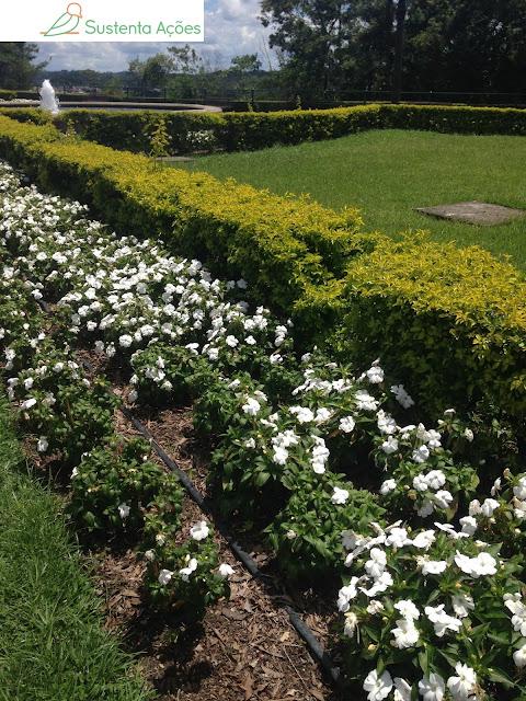 Flores no Jardim Poty Lazzarotto