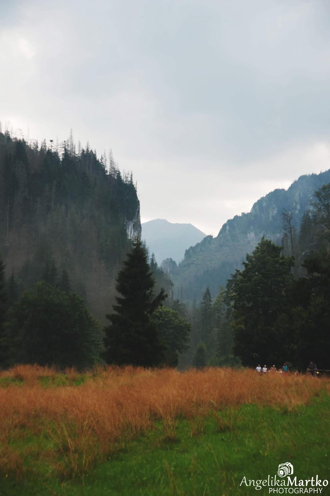 dolina koscieliska zakopane lato