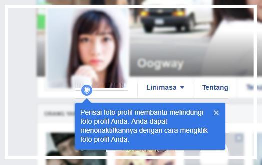 Cara Mengaktifkan Perisai (Picture Profil Guard) di Profil Facebook 14