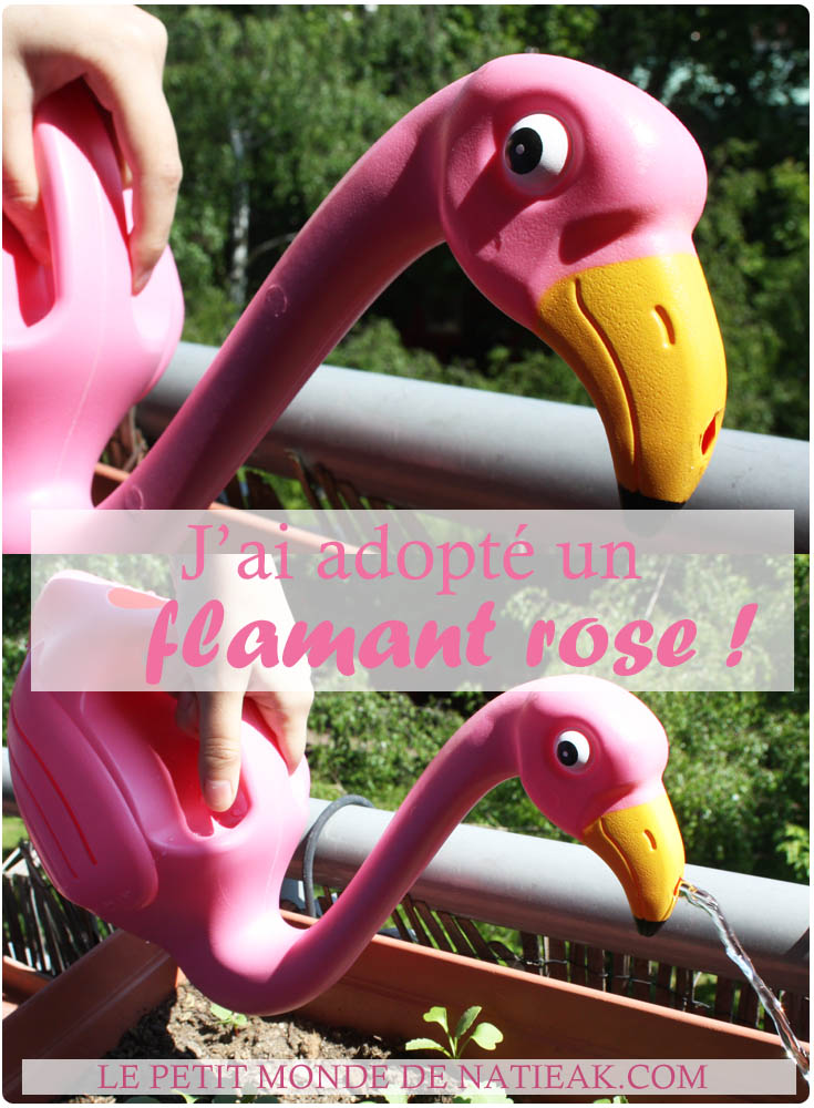 Un arrosoir Flamant rose