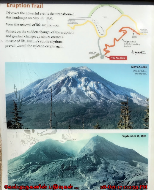 Johnston Ridge Eruption Trail