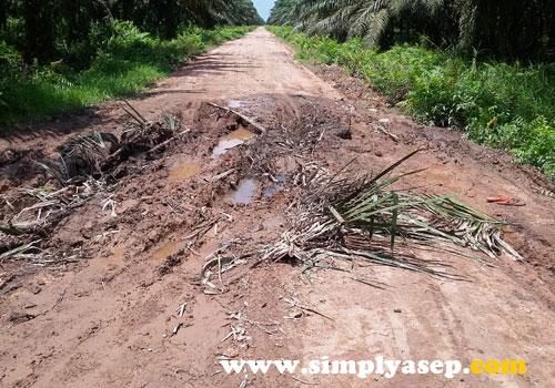 LICIN :   Jika tidak hati hati akan terperosok di dalamnya. Motor harus hati hati melewati lumpur ini. Foto Asep Haryono