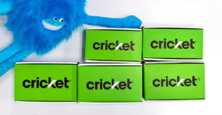 Creature with Cricket  Boxes
