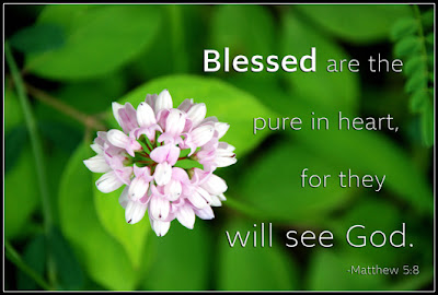 Matthew 5:8 Blessed are the pure in heart, for they will see God.