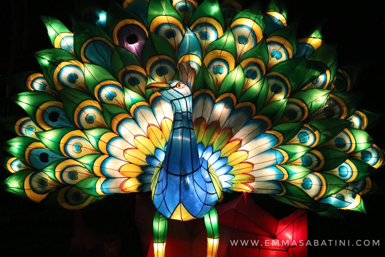 Festival of Light Cilegon Banten - Emma Sabatini