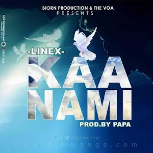 Download Audio | Linex - Kaa Nami