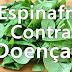 Os benefícios do Espinafre para a saúde - Previne câncer!