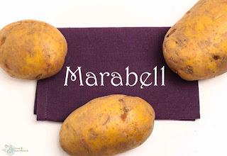http://www.amor-und-kartoffelsack.de/2017/01/ofenkartoffeln-toppings-sourcream-backofen.html