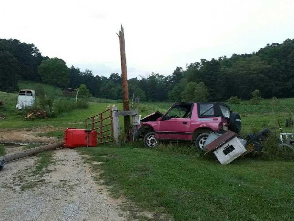 Kentucky Car Crash Bees
