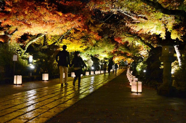 Ishiyama-dera on Light-up with autumnal leaves, Otsu-City, Shiga