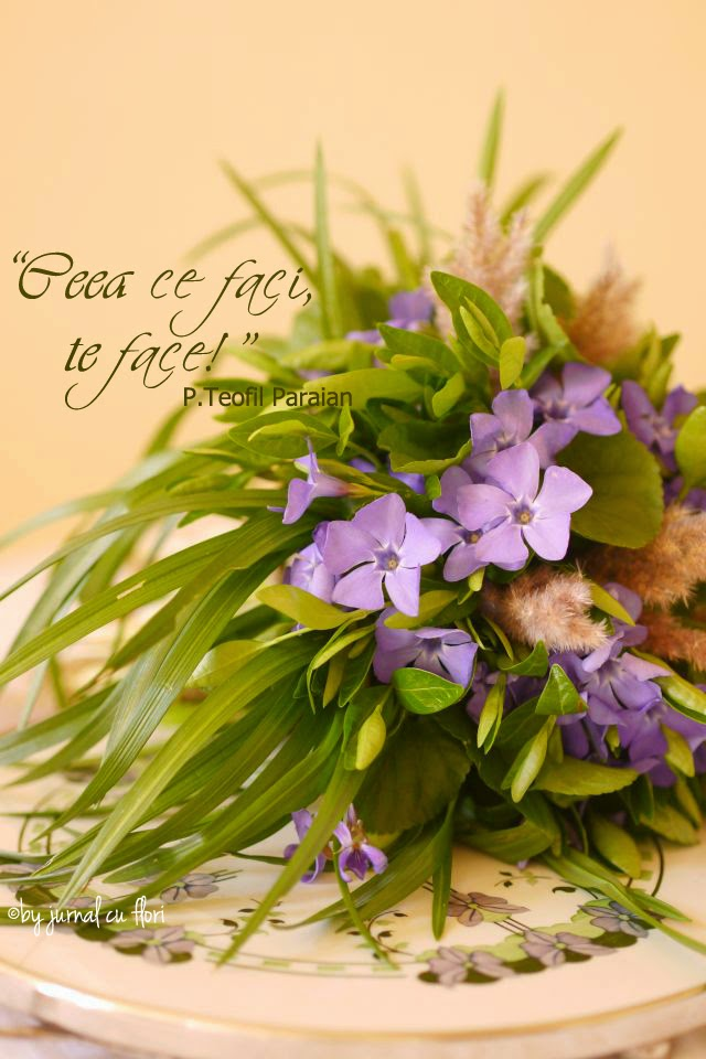 ceea ce faci te face citat p Teofil Paraian vinca major periwinkle bouquet buchet saschiu toporasi violet
