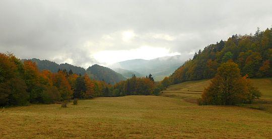 Widok w kierunku Przełęczy Korbalowej z podejścia na Wysoką.