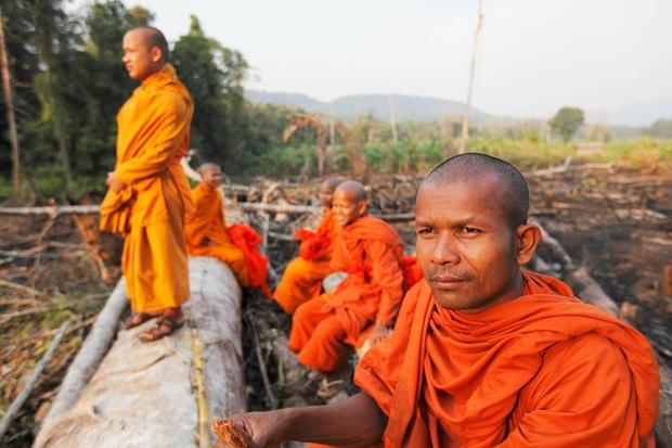 Cardamom+03+-+Monk+defending+forest+(Luke+Duggleby).jpg