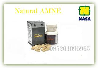 Jual Penggemuk Badan Natural Amne Nasa
