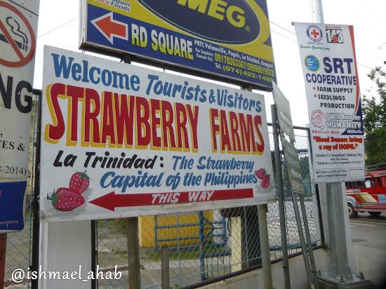 Sign to Strawberry Farm in La Trinidad, Benguet