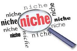 Daftar Niche Blog Yang Dibayar Mahal Oleh Google Adsense