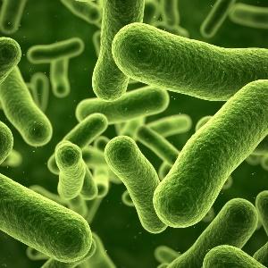 """خطوره فقدان التنوع الميكروبي البشري و إنشاء """"سفينة نوح"""" من الميكروبات البشرية المفيدة"""