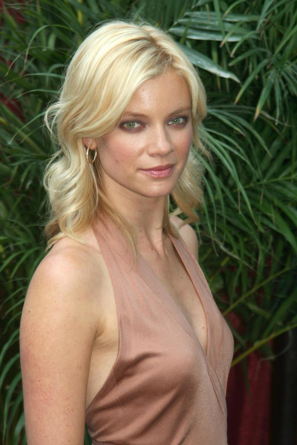 amy smart picture gallery