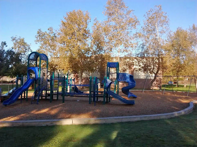 Playground with sycamore trees