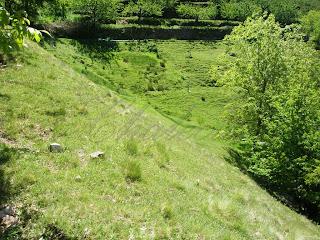 prado en el valle del jerte