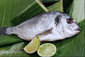 Menghilangkan Bau Amis Ikan