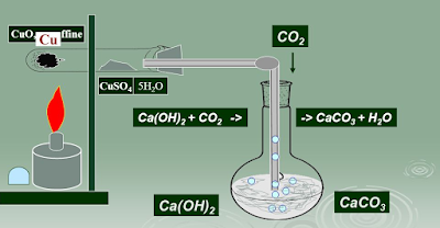 Detection of Carbon and Hydrogen