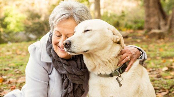 Estudio revela que los perros alargan la vida de sus dueños
