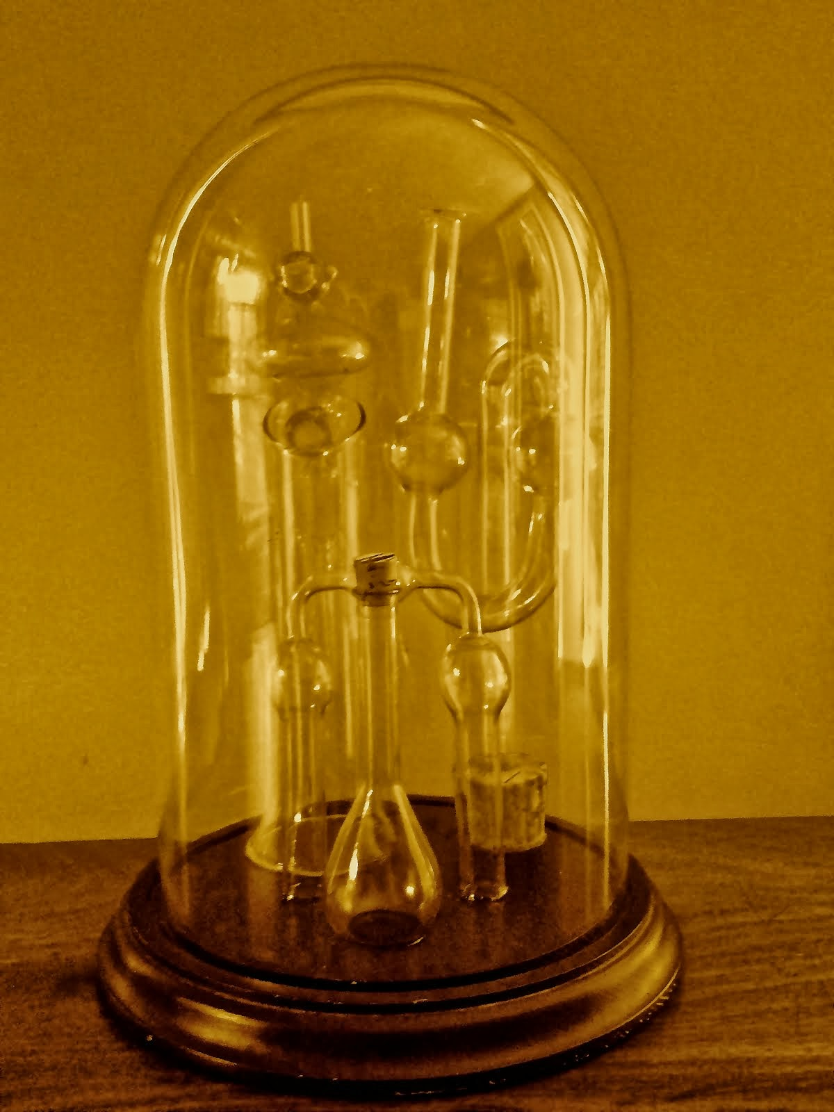 Laboratory glass cloche