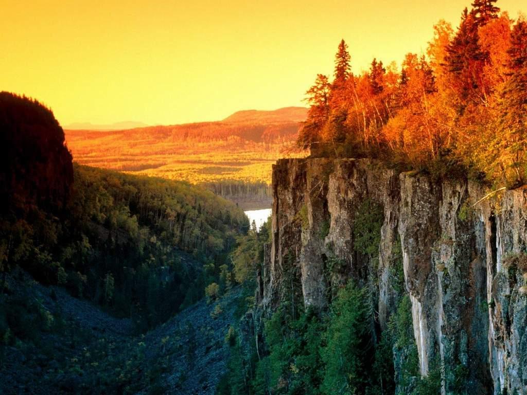 Wallpaper Pemandangan Pemandangan Tebing Hutan