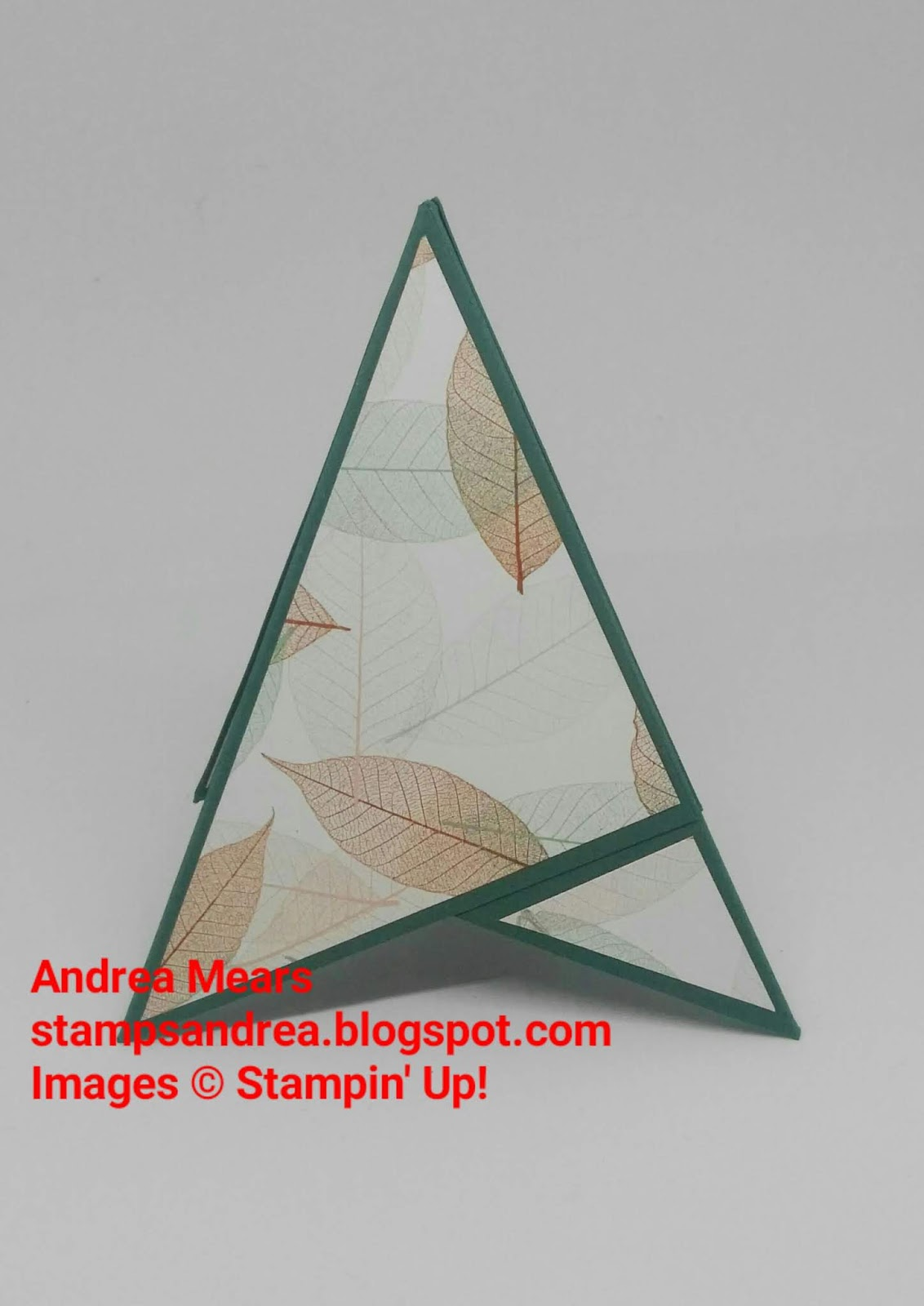 Natures Poem On A Pyramid Card Andrea Mears
