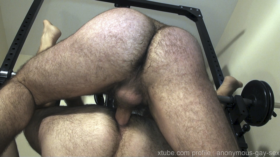 Bear Gay Xtube
