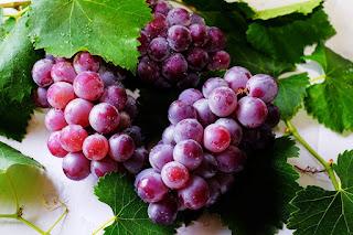 Arti Mimpi Anggur - Minum, Memetik Buah untuk Pria & Wanita
