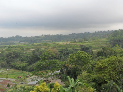 Pacung Bali Indonesia , Pacung Rice Terrace Bali , Pacung Village Bali , Pacung Restaurant Bali