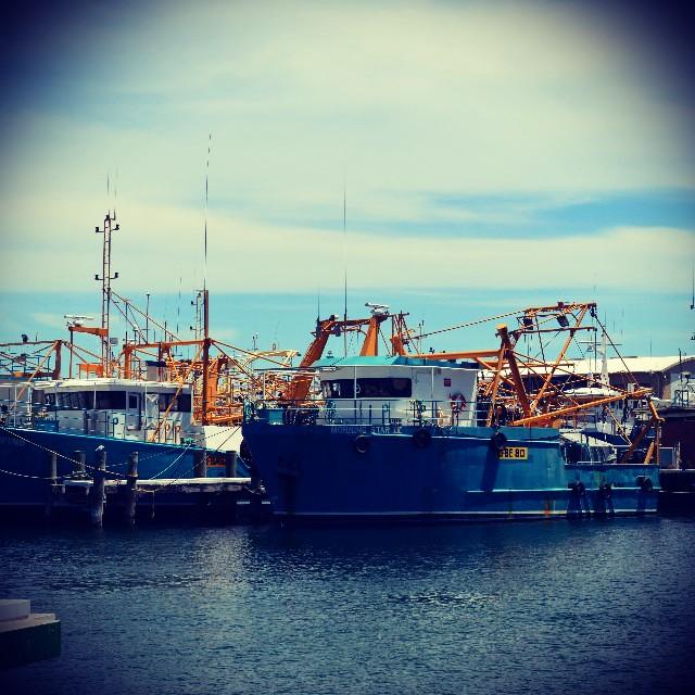 fremarntle harbour