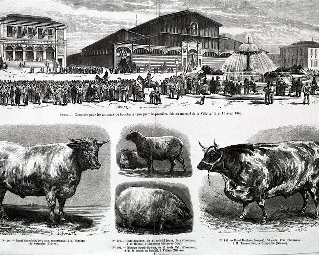 Bestiaux de la Villette