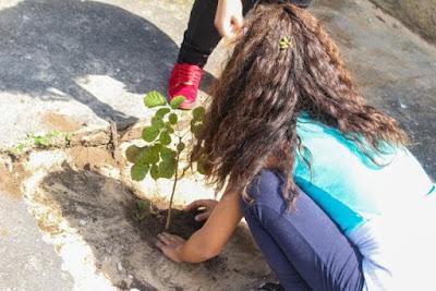 Plantio de mudas no dia da árvore