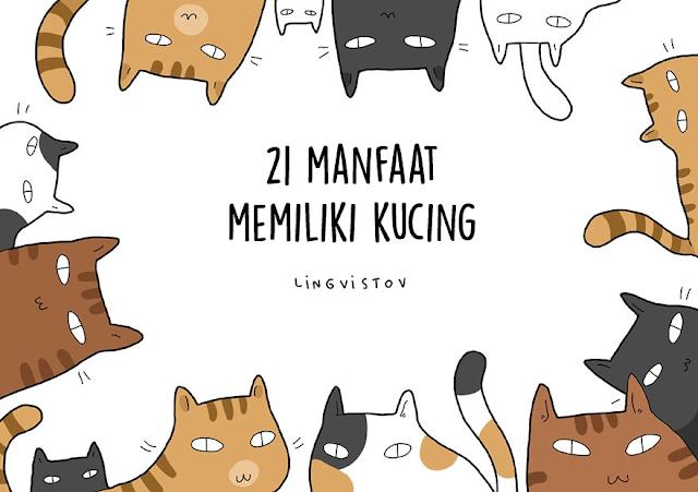 21 alasan kenapa kamu harus punya kucing