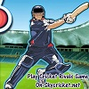 Play Cricket Rivals game online